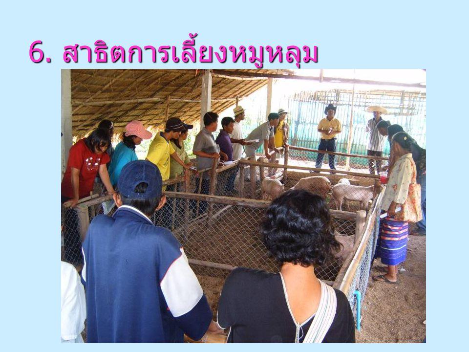 5. สาธิตการปลูกผักพื้นบ้านและ สมุนไพร