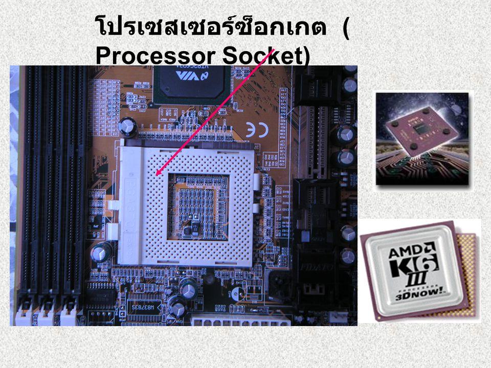 โปรเซสเซอร์ซ็อกเกต ( Processor Socket)