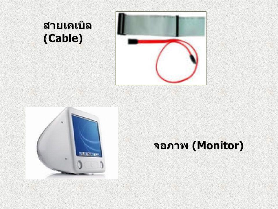 สายเคเบิล (Cable) จอภาพ (Monitor)