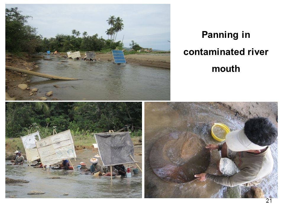 21 Panning in contaminated river mouth