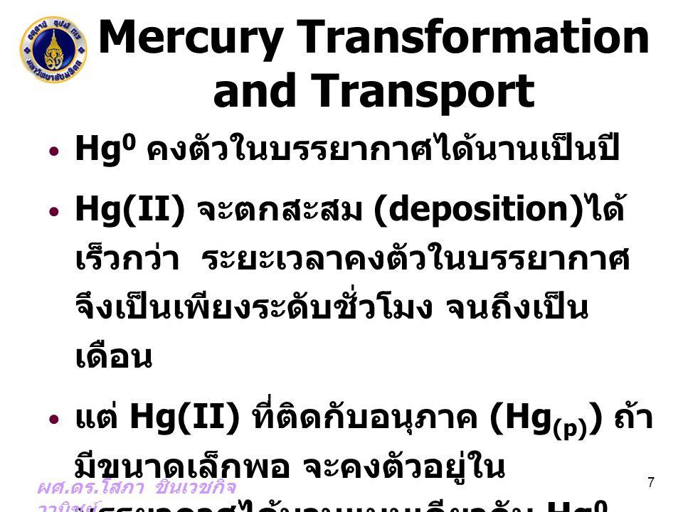 Mercury Transformation and Transport Hg 0 คงตัวในบรรยากาศได้นานเป็นปี Hg(II) จะตกสะสม (deposition) ได้ เร็วกว่า ระยะเวลาคงตัวในบรรยากาศ จึงเป็นเพียงระ