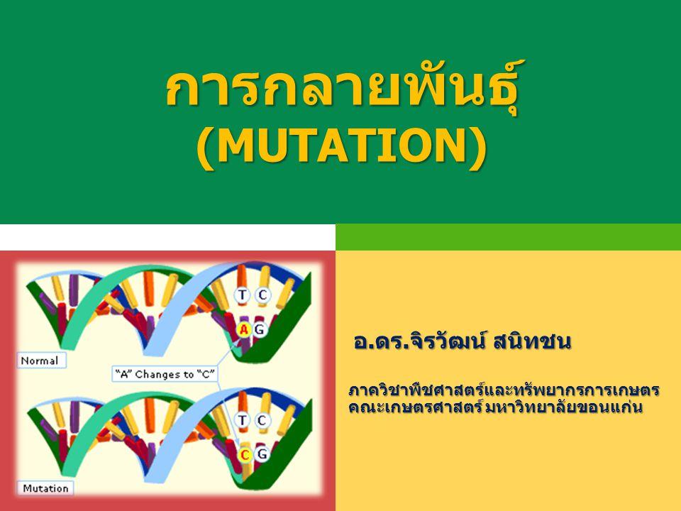 การกลายพันธุ์ (MUTATION) ภาควิชาพืชศาสตร์และทรัพยากรการเกษตร คณะเกษตรศาสตร์ มหาวิทยาลัยขอนแก่น อ.ดร.จิรวัฒน์ สนิทชน