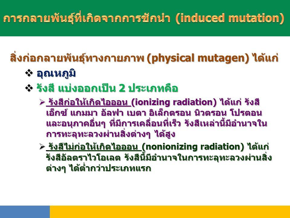 สิ่งก่อกลายพันธุ์ทางกายภาพ (physical mutagen) ได้แก่  อุณหภูมิ  รังสี แบ่งออกเป็น 2 ประเภทคือ  รังสีก่อให้เกิดไอออน (ionizing radiation) ได้แก่ รัง