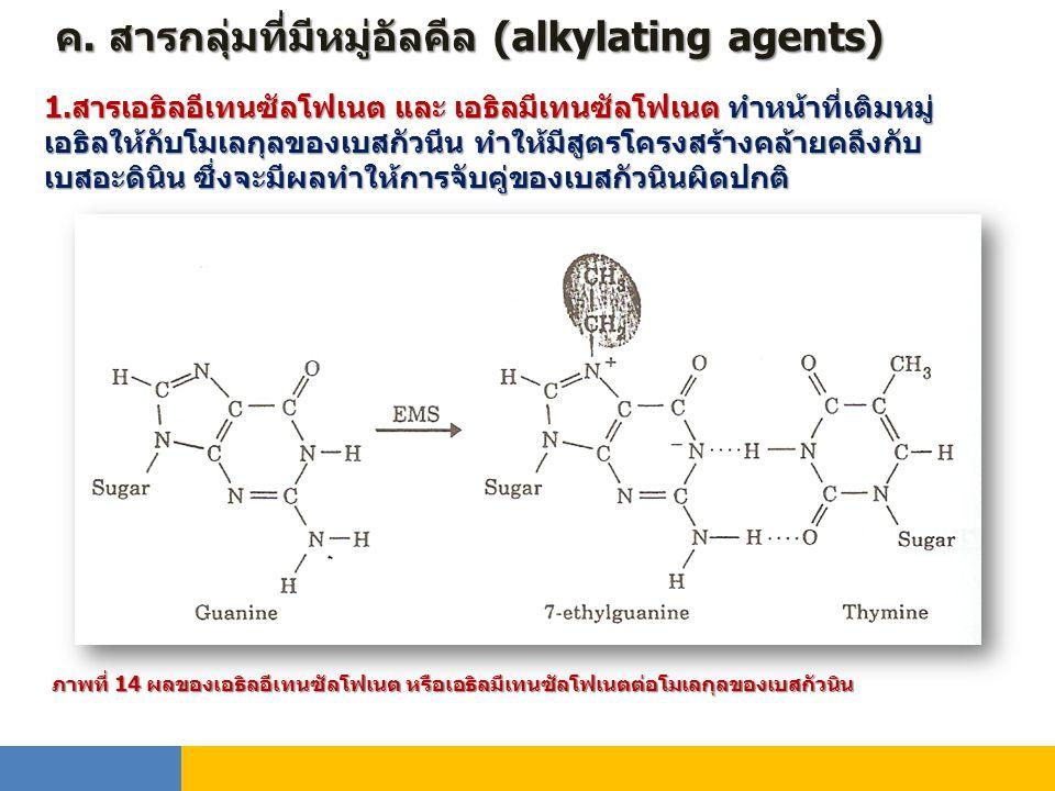 ค. สารกลุ่มที่มีหมู่อัลคีล (alkylating agents) 1.สารเอธิลอีเทนซัลโฟเนต และ เอธิลมีเทนซัลโฟเนต ทำหน้าที่เติมหมู่ เอธิลให้กับโมเลกุลของเบสกัวนีน ทำให้มี