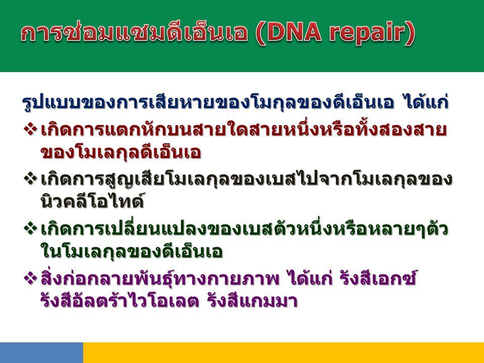 รูปแบบของการเสียหายของโมกุลของดีเอ็นเอ ได้แก่  เกิดการแตกหักบนสายใดสายหนึ่งหรือทั้งสองสาย ของโมเลกุลดีเอ็นเอ  เกิดการสูญเสียโมเลกุลของเบสไปจากโมเลกุ