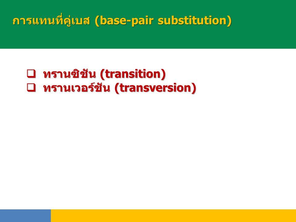 การแทนที่คู่เบส (base-pair substitution)  ทรานซิชัน (transition)  ทรานเวอร์ชัน (transversion)