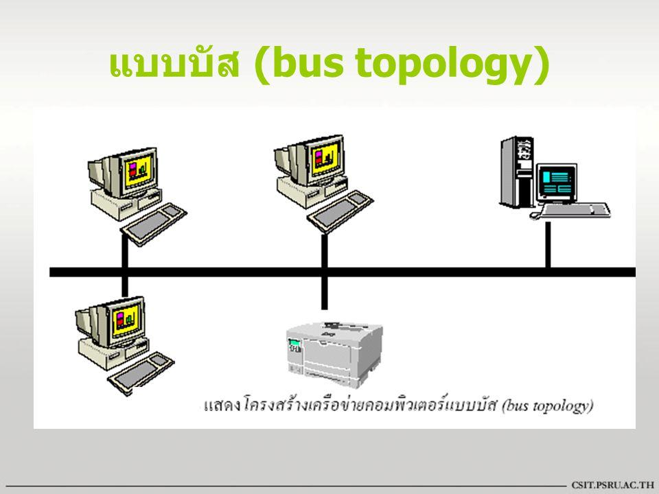 แบบบัส (bus topology)