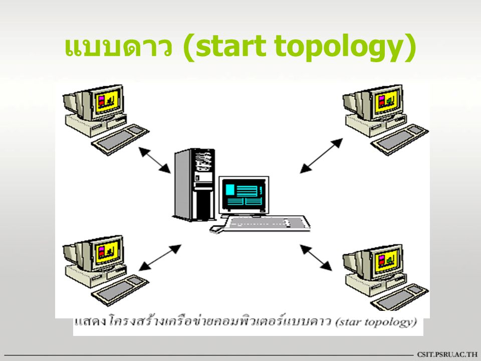 ภายในเครือข่ายจะมีจุดศูนย์กลางในการควบคุม การเชื่อมต่อของคอมพิวเตอร์ อาจจะเป็น อุปกรณ์ เช่น hub หรือเครื่องคอมพิวเตอร์ก็ได้ การสื่อสารระหว่างเครื่องคอมพิวเตอร์ต้อง สื่อสารผ่านศูนย์กลางก่อนที่จะส่งไปยังเครื่อง คอมพิวเตอร์เครื่องอื่น ๆ ข้อดี ทำการเพิ่มจำนวนเครื่องคอมพิวเตอร์ใหม่ ได้ง่ายและไม่กระทบต่อคอมพิวเตอร์ตัวอื่นใน ระบบ ข้อเสีย ค่าใช้จ่ายสำหรับสายเคเบิ้ลค่อนข้างสูง และเมื่อศูนย์กลางขัดข้องระบบก็จะหยุดทำงาน ด้วย