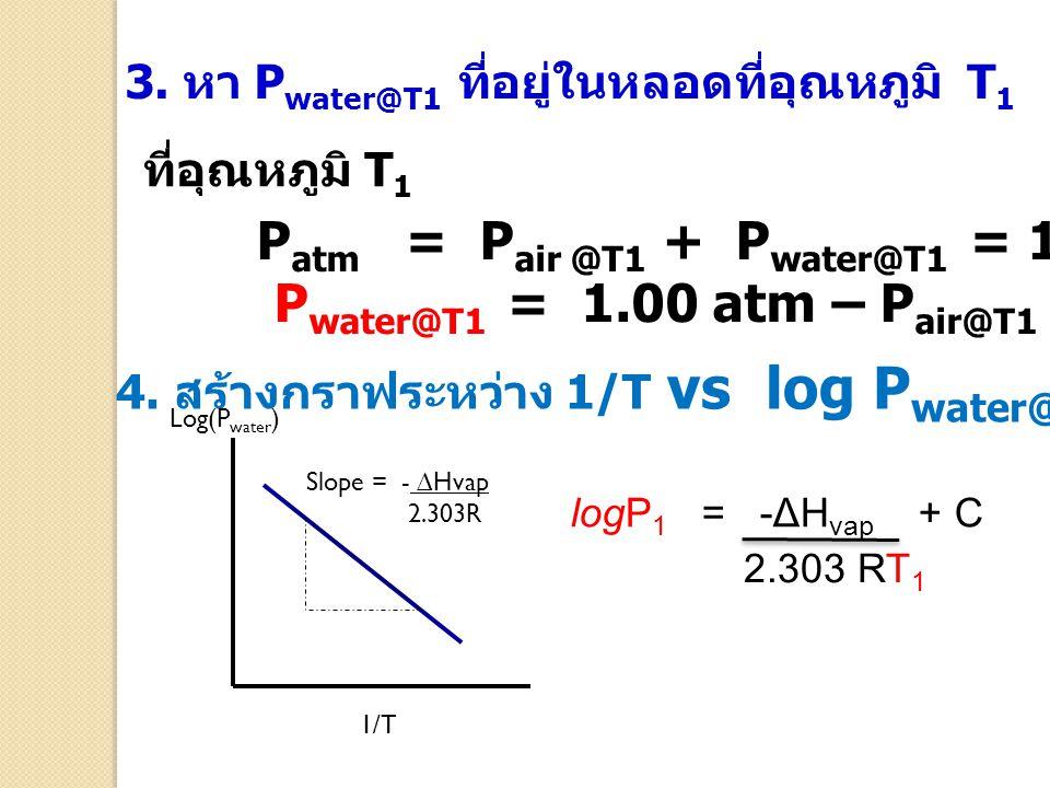 3. หา P water@T1 ที่อยู่ในหลอดที่อุณหภูมิ T 1 P atm = P air @T1 + P water@T1 = 1.00 atm P water@T1 = 1.00 atm – P air@T1 4. สร้างกราฟระหว่าง 1/T vs lo