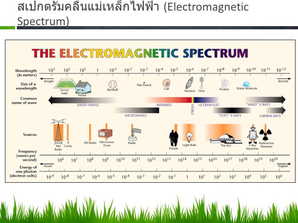 สเปกตรัมคลื่นแม่เหล็กไฟฟ้า (Electromagnetic Spectrum)
