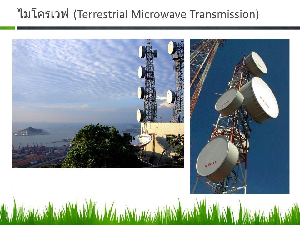 ไมโครเวฟ (Terrestrial Microwave Transmission)