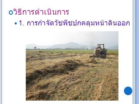 วิธีการดำเนินการ 1. การกำจัดวัชพืชปกคลุมหน้าดินออก