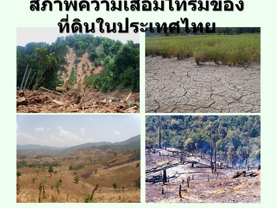สภาพความเสื่อมโทรมของ ที่ดินในประเทศไทย