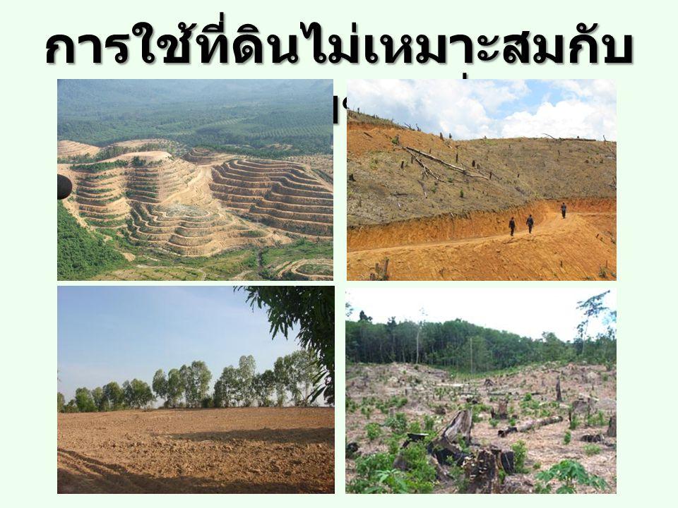 การใช้ที่ดินไม่เหมาะสมกับ ศักยภาพของที่ดิน