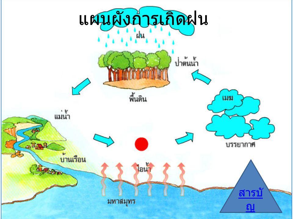 แผนผังการเกิดฝน สารบั ญ