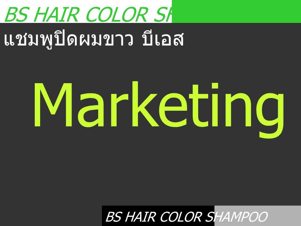 BS HAIR COLOR SHAMPOO แชมพูปิดผมขาว บีเอส Marketing Plan BS HAIR COLOR SHAMPOO แชมพูปิดผมขาว บีเอส