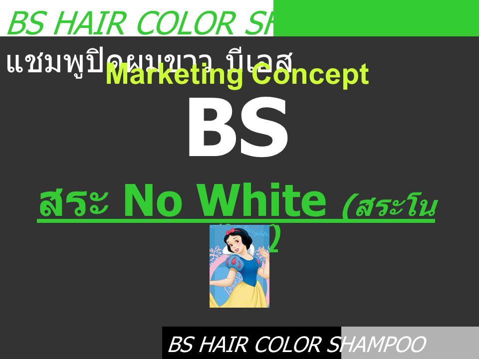 BS HAIR COLOR SHAMPOO แชมพูปิดผมขาว บีเอส Marketing Concept BS HAIR COLOR SHAMPOO แชมพูปิดผมขาว บีเอส BS สระ No White ( สระโน ไวท์ )
