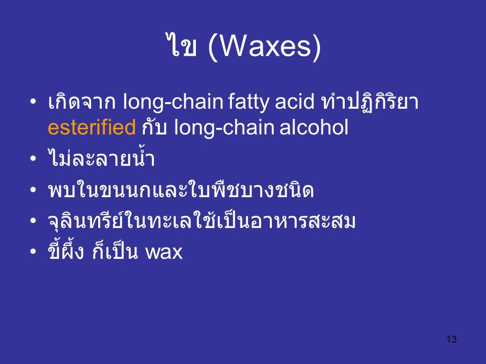 13 ไข (Waxes) เกิดจาก long-chain fatty acid ทำปฏิกิริยา esterified กับ long-chain alcohol ไม่ละลายน้ำ พบในขนนกและใบพืชบางชนิด จุลินทรีย์ในทะเลใช้เป็นอ