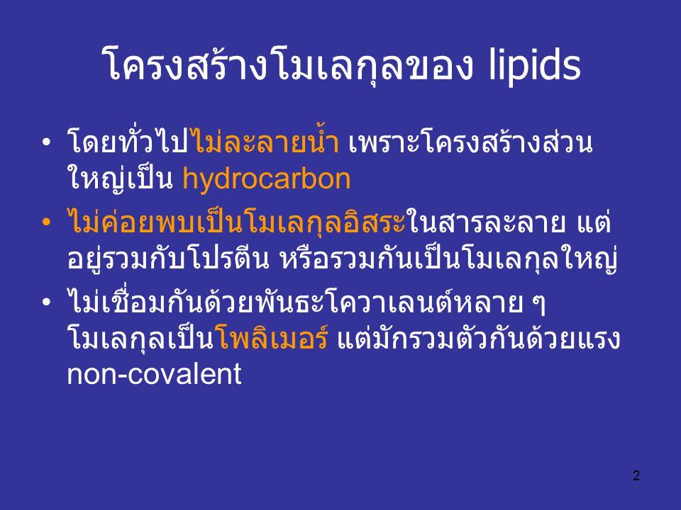 2 โครงสร้างโมเลกุลของ lipids โดยทั่วไปไม่ละลายน้ำ เพราะโครงสร้างส่วน ใหญ่เป็น hydrocarbon ไม่ค่อยพบเป็นโมเลกุลอิสระในสารละลาย แต่ อยู่รวมกับโปรตีน หรื