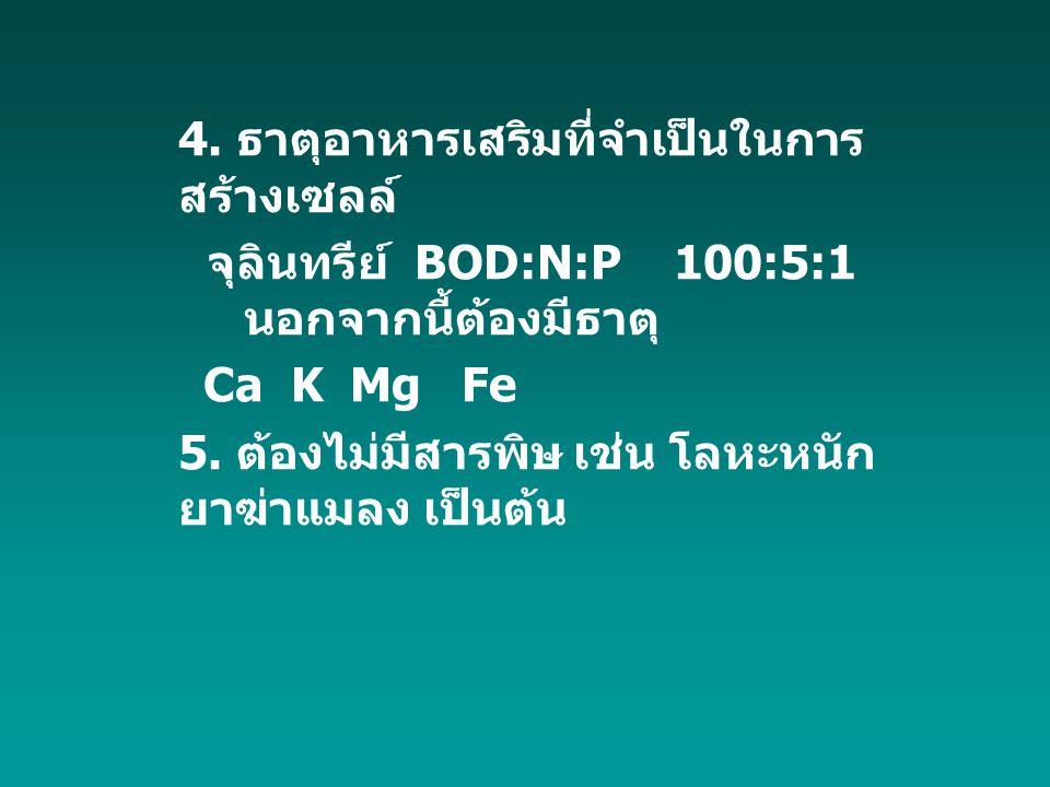 4. ธาตุอาหารเสริมที่จำเป็นในการ สร้างเซลล์ จุลินทรีย์ BOD:N:P 100:5:1 นอกจากนี้ต้องมีธาตุ Ca K Mg Fe 5. ต้องไม่มีสารพิษ เช่น โลหะหนัก ยาฆ่าแมลง เป็นต้