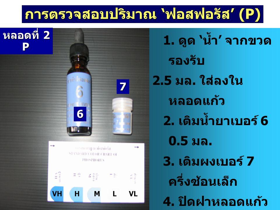 การตรวจสอบปริมาณ 'ฟอสฟอรัส' (P) 1. ดูด ' น้ำ ' จากขวด รองรับ 2.5 มล. ใส่ลงใน หลอดแก้ว 2. เติมน้ำยาเบอร์ 6 0.5 มล. 3. เติมผงเบอร์ 7 ครึ่งซ้อนเล็ก 4. ปิ