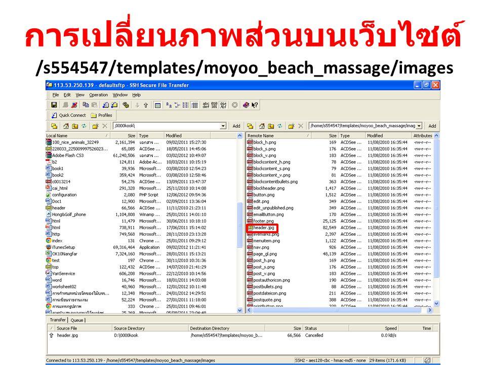 การเปลี่ยนภาพส่วนบนเว็บไซต์ /s554547/templates/moyoo_beach_massage/images