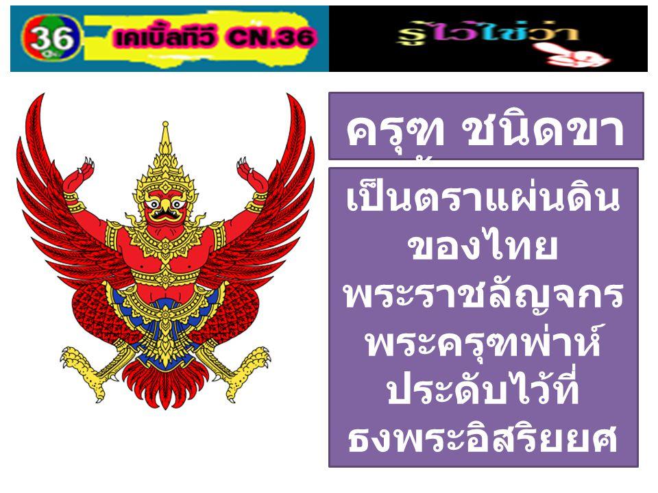 ครุฑ ชนิดขา ตั้งเฉียง เป็นตราแผ่นดิน ของไทย พระราชลัญจกร พระครุฑพ่าห์ ประดับไว้ที่ ธงพระอิสริยยศ ประจำพระองค์