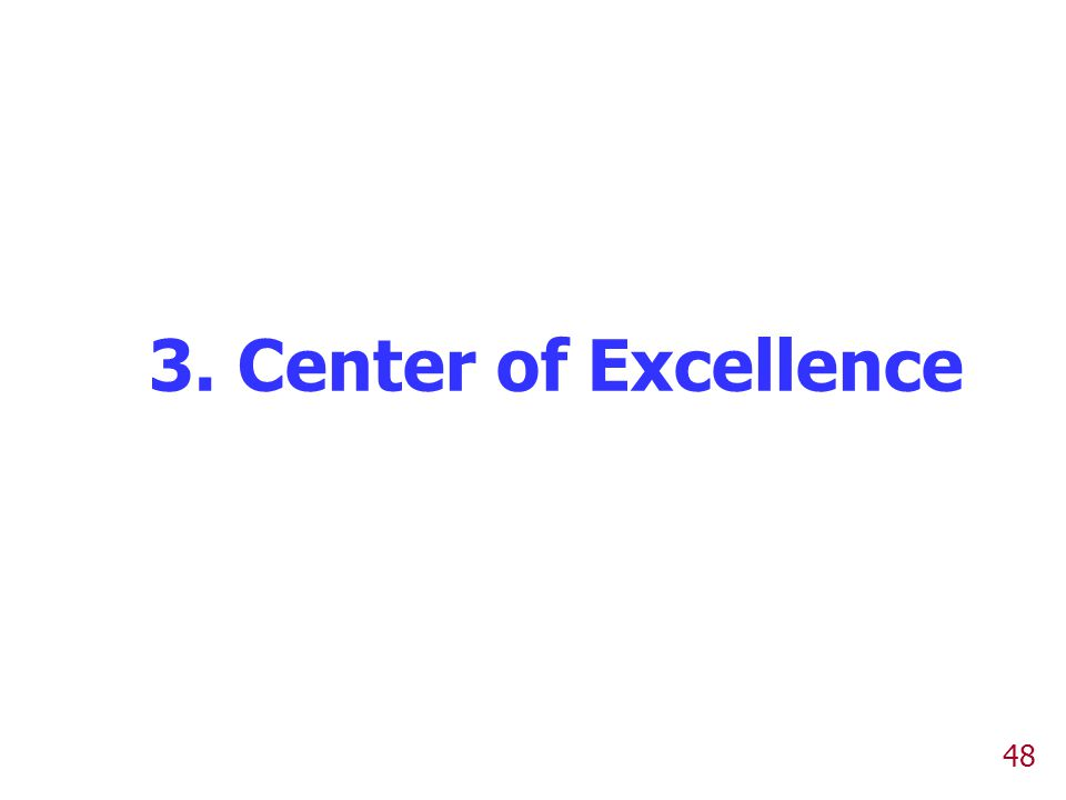 48 3. Center of Excellence