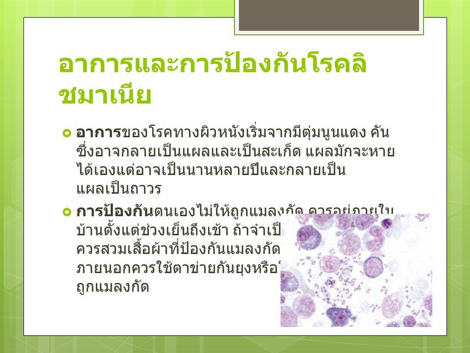 ไวรัส Molluscum contagiosum virus (MCV)  หูดข้าวสุก (Molluscum contagiosum) คือโรคที่เกิดจากเชื้อไวรัส Molluscum contagiosum virus (MCV) ทำให้เกิด เป็นตุ่มนูนบนผิวหนัง ขนาดประมาณ 2-5 มิลลิเมตร จะพบมากขึ้นในรายที่มีการติด เชื้อ HIVHIV  หูดข้าวสุกติดต่อได้โดยการสัมผัสและทาง เพศสัมพันธ์ นอกจากนี้ยังสามารถติดต่อได้ โดยการใช้สระว่ายน้ำร่วมกัน หากมีโรค ภูมิแพ้ของผิวหนังอยู่ก่อนจะมีความเสี่ยงต่อ การเกิดโรคมากขึ้น