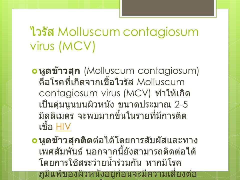 ไวรัส Molluscum contagiosum virus (MCV)  หูดข้าวสุก (Molluscum contagiosum) คือโรคที่เกิดจากเชื้อไวรัส Molluscum contagiosum virus (MCV) ทำให้เกิด เป