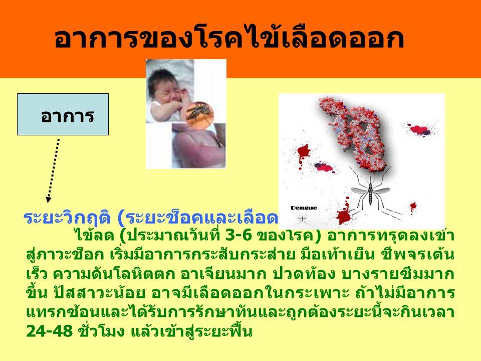 อาการของโรคไข้เลือดออก อาการ ระยะวิกฤติ ( ระยะช็อคและเลือดออก ) ไข้ลด ( ประมาณวันที่ 3-6 ของโรค ) อาการทรุดลงเข้า สู่ภาวะช็อก เริ่มมีอาการกระสับกระส่า