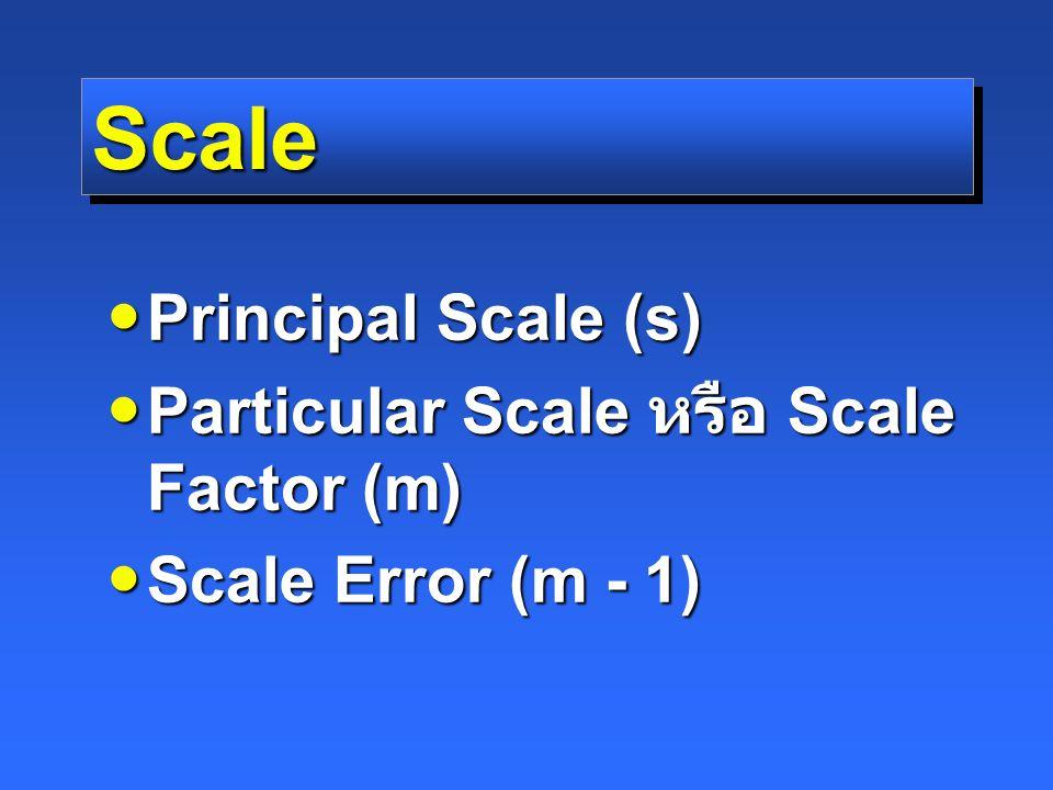 ScaleScale Principal Scale (s) Principal Scale (s) Particular Scale หรือ Scale Factor (m) Particular Scale หรือ Scale Factor (m) Scale Error (m - 1) Scale Error (m - 1)