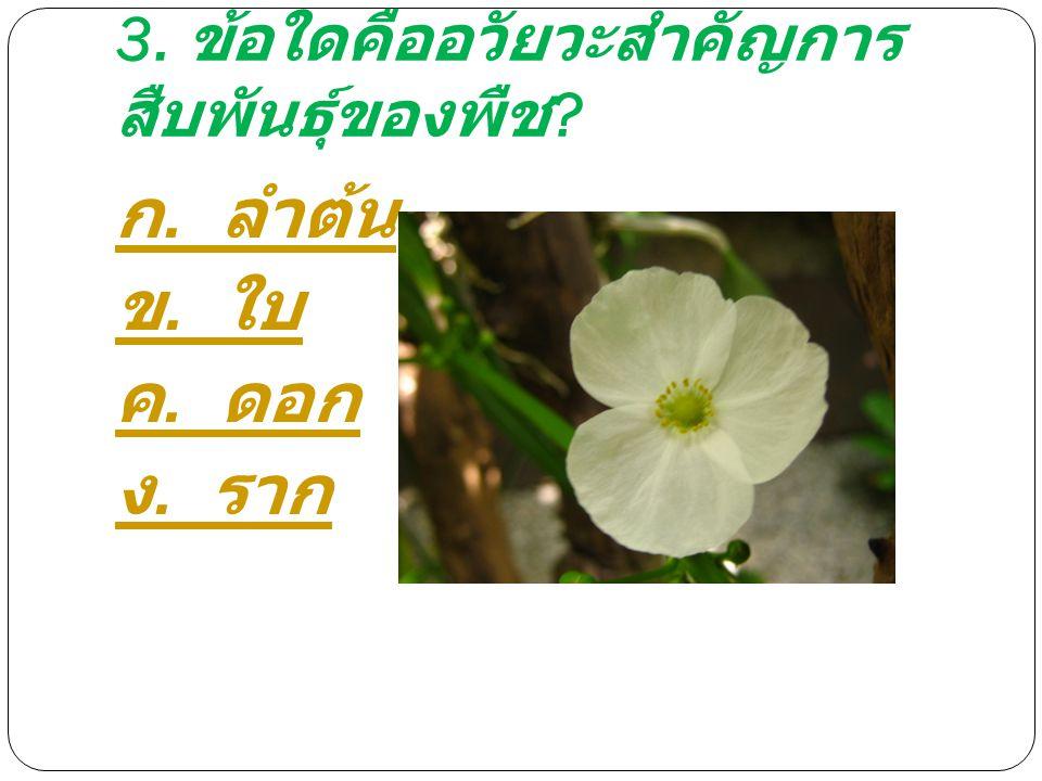 3. ข้อใดคืออวัยวะสำคัญการ สืบพันธุ์ของพืช ? ก. ลำต้น ข. ใบ ค. ดอก ง. ราก