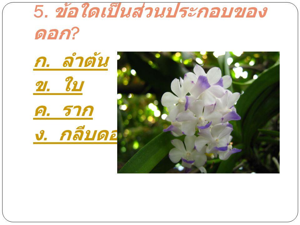 5. ข้อใดเป็นส่วนประกอบของ ดอก ? ก. ลำต้น ข. ใบ ค. ราก ง. กลีบดอก