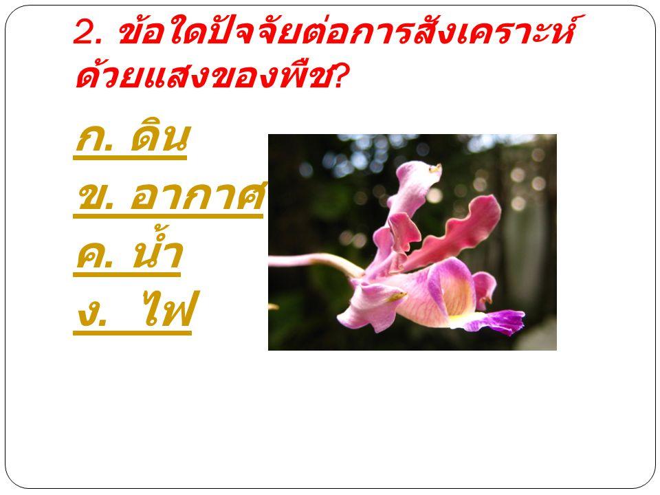 2. ข้อใดปัจจัยต่อการสังเคราะห์ ด้วยแสงของพืช ? ก. ดิน ข. อากาศ ค. น้ำ ง. ไฟ
