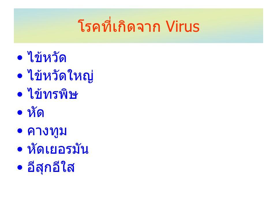 โรคที่เกิดจาก Virus ไข้หวัด ไข้หวัดใหญ่ ไข้ทรพิษ หัด คางทูม หัดเยอรมัน อีสุกอีใส