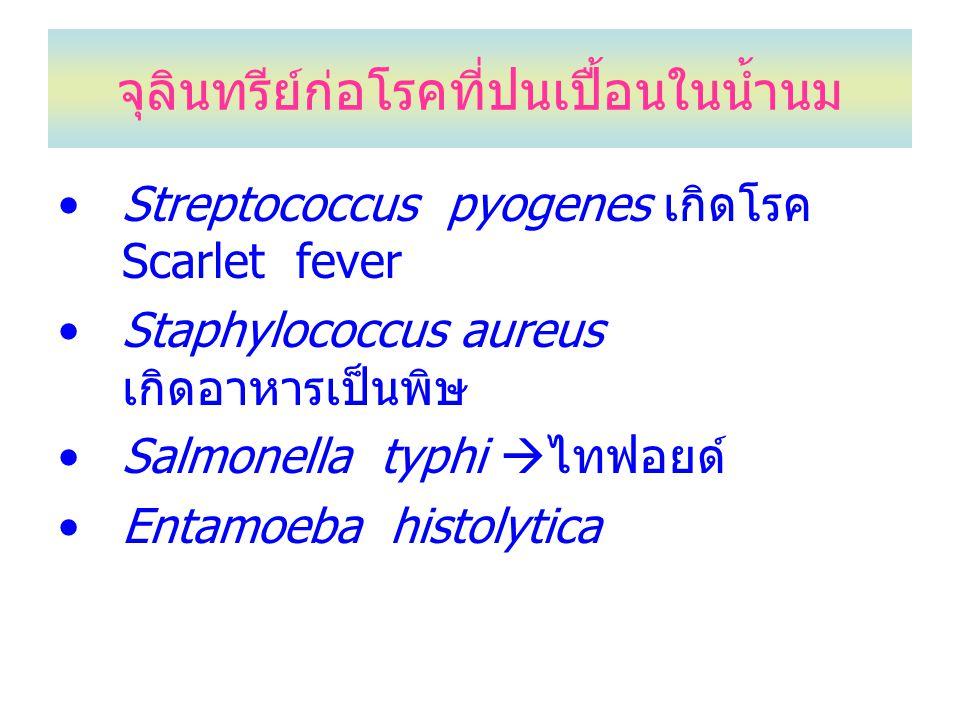 จุลินทรีย์ก่อโรคที่ปนเปื้อนในน้ำนม Streptococcus pyogenes เกิดโรค Scarlet fever Staphylococcus aureus เกิดอาหารเป็นพิษ Salmonella typhi  ไทฟอยด์ Enta