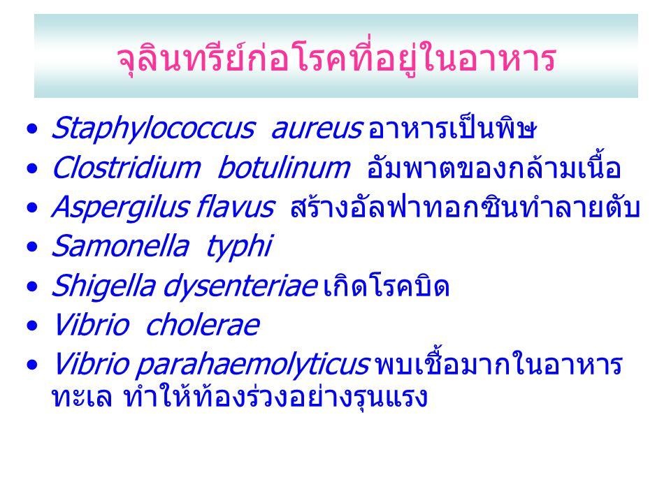 จุลินทรีย์ก่อโรคที่อยู่ในอาหาร Staphylococcus aureus อาหารเป็นพิษ Clostridium botulinum อัมพาตของกล้ามเนื้อ Aspergilus flavus สร้างอัลฟาทอกซินทำลายตับ