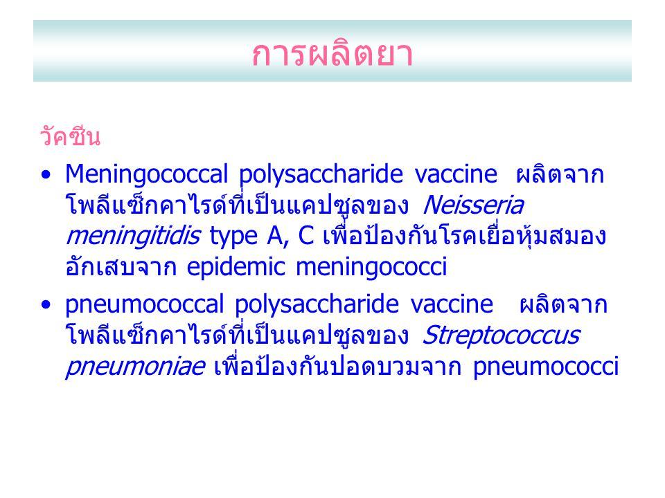 การผลิตยา วัคซีน Meningococcal polysaccharide vaccine ผลิตจาก โพลีแซ็กคาไรด์ที่เป็นแคปซูลของ Neisseria meningitidis type A, C เพื่อป้องกันโรคเยื่อหุ้มสมอง อักเสบจาก epidemic meningococci pneumococcal polysaccharide vaccine ผลิตจาก โพลีแซ็กคาไรด์ที่เป็นแคปซูลของ Streptococcus pneumoniae เพื่อป้องกันปอดบวมจาก pneumococci