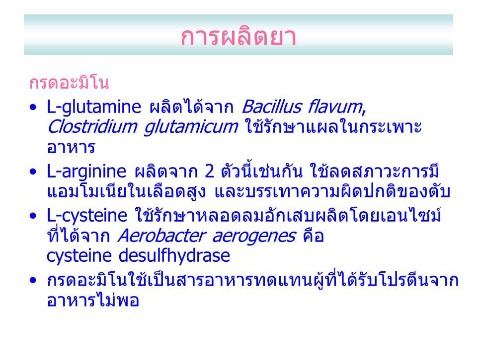 การผลิตยา กรดอะมิโน L-glutamine ผลิตได้จาก Bacillus flavum, Clostridium glutamicum ใช้รักษาแผลในกระเพาะ อาหาร L-arginine ผลิตจาก 2 ตัวนี้เช่นกัน ใช้ลด