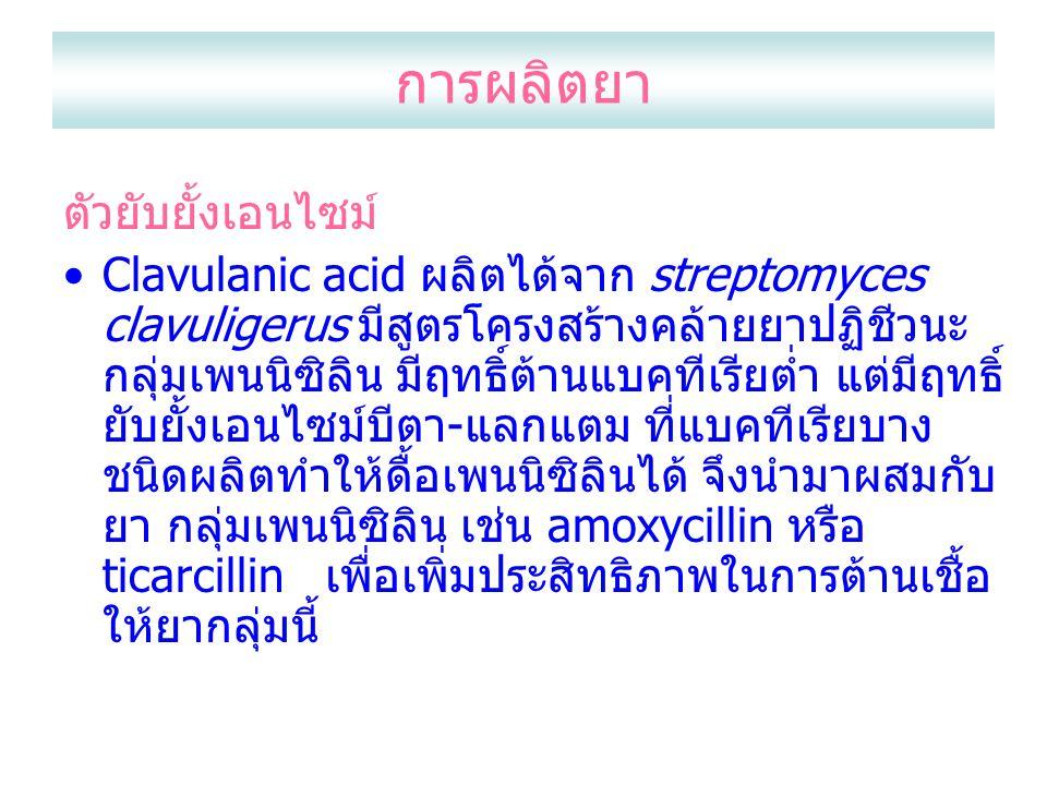 การผลิตยา ตัวยับยั้งเอนไซม์ Clavulanic acid ผลิตได้จาก streptomyces clavuligerus มีสูตรโครงสร้างคล้ายยาปฏิชีวนะ กลุ่มเพนนิซิลิน มีฤทธิ์ต้านแบคทีเรียต่ำ แต่มีฤทธิ์ ยับยั้งเอนไซม์บีตา-แลกแตม ที่แบคทีเรียบาง ชนิดผลิตทำให้ดื้อเพนนิซิลินได้ จึงนำมาผสมกับ ยา กลุ่มเพนนิซิลิน เช่น amoxycillin หรือ ticarcillin เพื่อเพิ่มประสิทธิภาพในการต้านเชื้อ ให้ยากลุ่มนี้