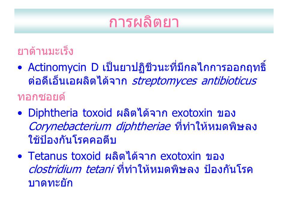 การผลิตยา ยาต้านมะเร็ง Actinomycin D เป็นยาปฏิชีวนะที่มีกลไกการออกฤทธิ์ ต่อดีเอ็นเอผลิตได้จาก streptomyces antibioticus ทอกซอยด์ Diphtheria toxoid ผลิตได้จาก exotoxin ของ Corynebacterium diphtheriae ที่ทำให้หมดพิษลง ใช้ป้องกันโรคคอตีบ Tetanus toxoid ผลิตได้จาก exotoxin ของ clostridium tetani ที่ทำให้หมดพิษลง ป้องกันโรค บาดทะยัก