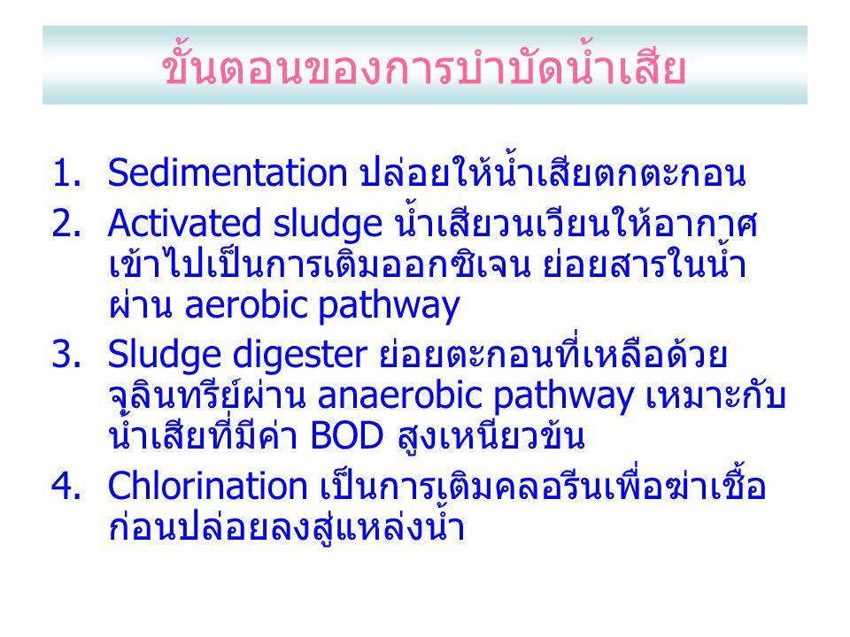 ขั้นตอนของการบำบัดน้ำเสีย 1.Sedimentation ปล่อยให้น้ำเสียตกตะกอน 2.Activated sludge น้ำเสียวนเวียนให้อากาศ เข้าไปเป็นการเติมออกซิเจน ย่อยสารในน้ำ ผ่าน aerobic pathway 3.Sludge digester ย่อยตะกอนที่เหลือด้วย จุลินทรีย์ผ่าน anaerobic pathway เหมาะกับ น้ำเสียที่มีค่า BOD สูงเหนียวข้น 4.Chlorination เป็นการเติมคลอรีนเพื่อฆ่าเชื้อ ก่อนปล่อยลงสู่แหล่งน้ำ