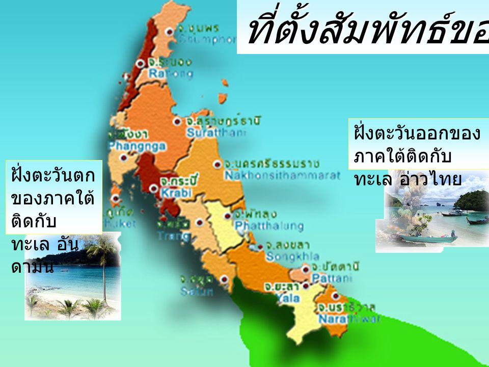 ที่ตั้งสัมพัทธ์ของภาคใต้ ฝั่งตะวันออกของ ภาคใต้ติดกับ ทะเล อ่าวไทย ฝั่งตะวันตก ของภาคใต้ ติดกับ ทะเล อัน ดามัน