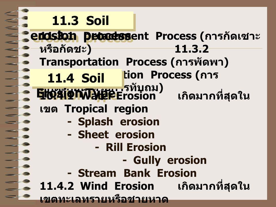 11.3 Soil erosion process 11.3.1 Detachment Process ( การกัดเซาะ หรือกัดชะ ) 11.3.2 Transportation Process ( การพัดพา ) 11.3.3 Deposition Process ( การ ตกตะกอน หรือการทับถม ) 11.4 Soil Erosion Type 10.4.1 Water Erosion เกิดมากที่สุดใน เขต Tropical region - Splash erosion - Sheet erosion - Rill Erosion - Gully erosion - Stream Bank Erosion 11.4.2 Wind Erosion เกิดมากที่สุดใน เขตทะเลทรายหรือชายหาด - Soil Creep