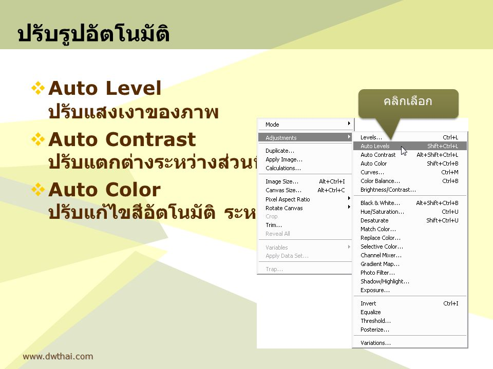 www.dwthai.com ปรับรูปอัตโนมัติ  Auto Level ปรับแสงเงาของภาพ  Auto Contrast ปรับแตกต่างระหว่างส่วนที่มืดกับสว่าง  Auto Color ปรับแก้ไขสีอัตโนมัติ ร