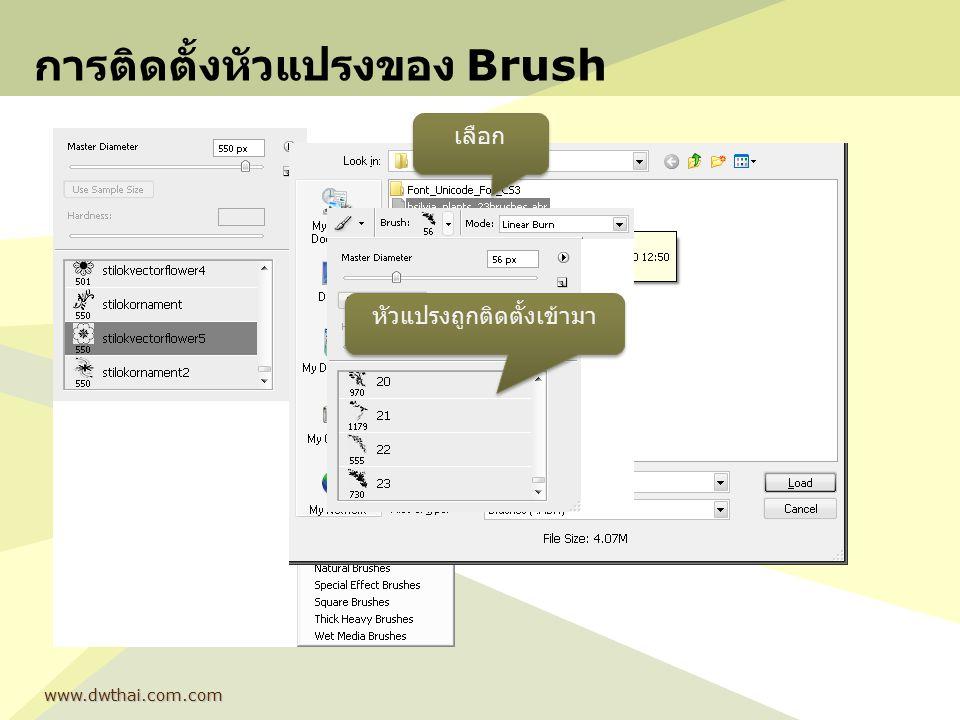 การติดตั้งหัวแปรงของ Brush www.dwthai.com.com เลือก หัวแปรงถูกติดตั้งเข้ามา