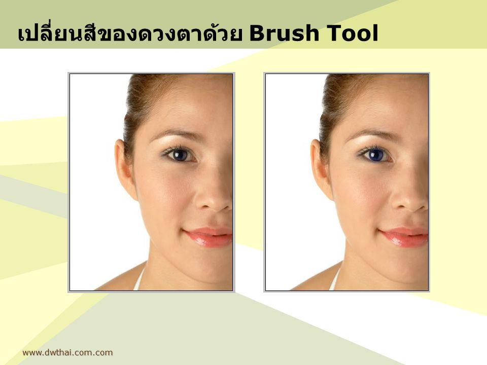 เปลี่ยนสีของดวงตาด้วย Brush Tool www.dwthai.com.com
