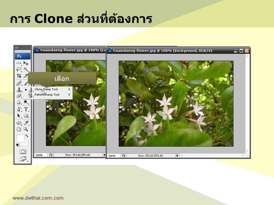 การ Clone ส่วนที่ต้องการ www.dwthai.com.com เลือก