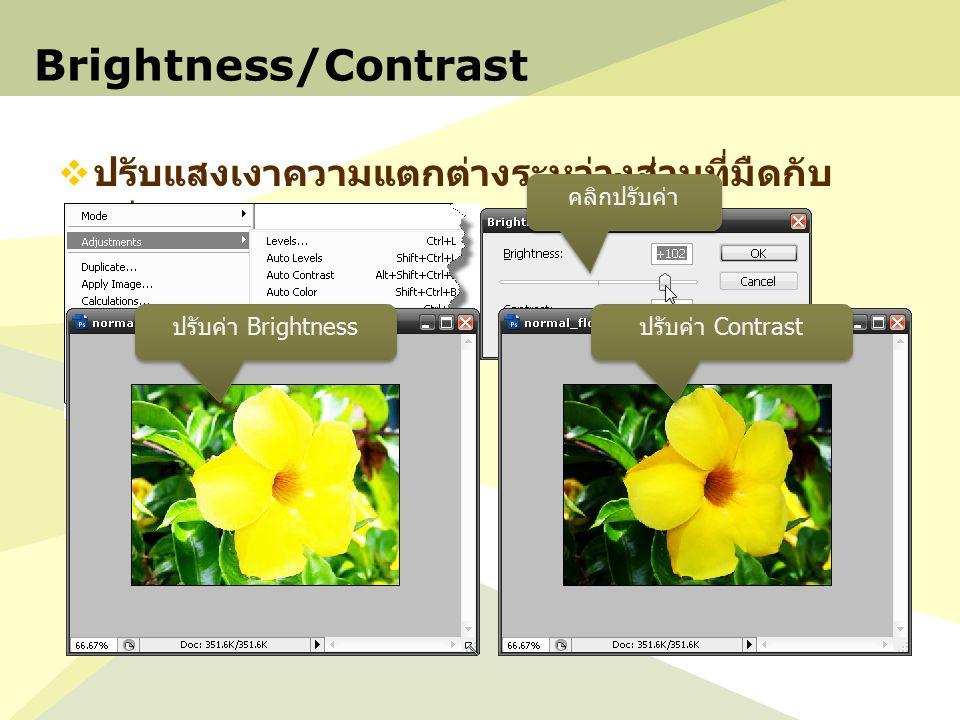 Brightness/Contrast  ปรับแสงเงาความแตกต่างระหว่างส่วนที่มืดกับ สว่าง คลิกปรับค่า ปรับค่า Brightness ปรับค่า Contrast
